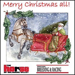 Merry Christmas Promo Ad