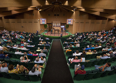 Keeneland September scenic Sales Ring Photo WEB credit Keeneland