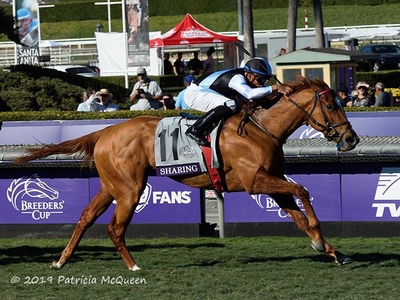 Sharing Breeders Cup