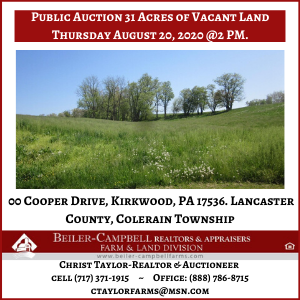 Beiler-Campbell Cooper Drive-Auction