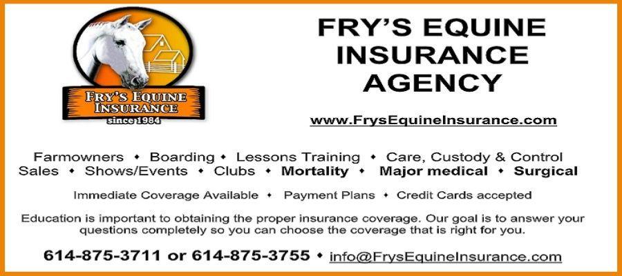 Frys Insurance 2020