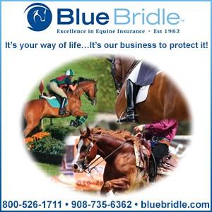 Blue Bridle 2020