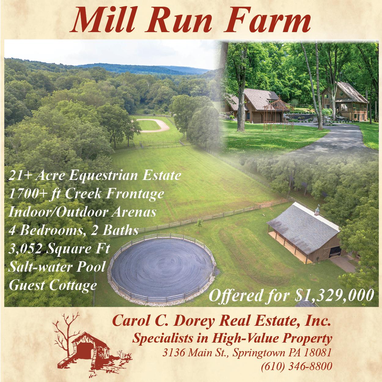 Mill Run Farm - Dorey