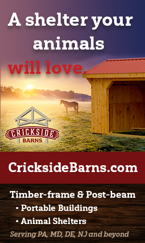 Crickside Barns