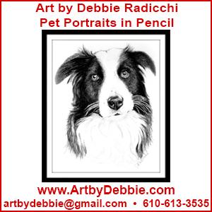 Art by Debbie Radichhio