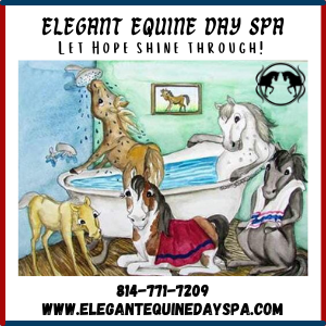 Elegant Equine Day Spa