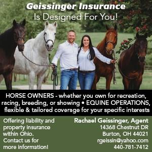Gessinger Insurance