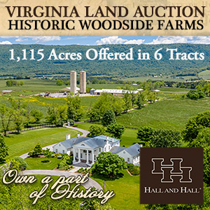 Virginia Land Auction-Hall to Hall RE