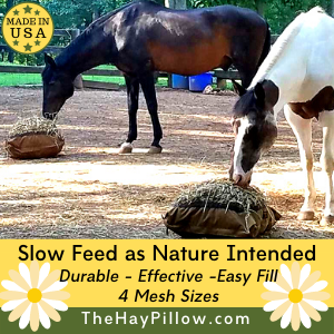 Slow Feed Hay Pillow