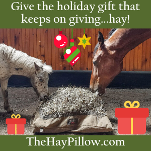 The Hay Pillow-Nov