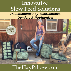 The Hay Pillow - New