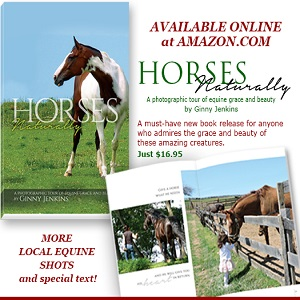 Horses Naturally-Ginny-Amazon