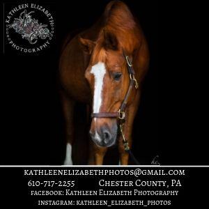 Kathleen Elizabeth Photography