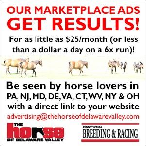 Marketplace Promo Ad