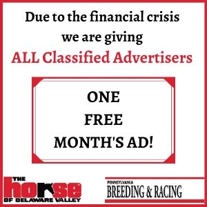Free Classified Ad-Ad