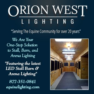Orion West Lighting