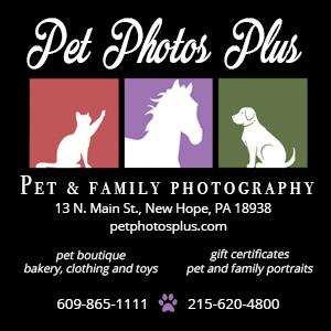 Pet Photos Plus