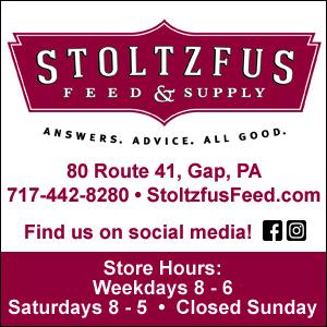 Stoltzfus 300x300