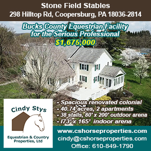 Stonefield Stables-Cindy Stys