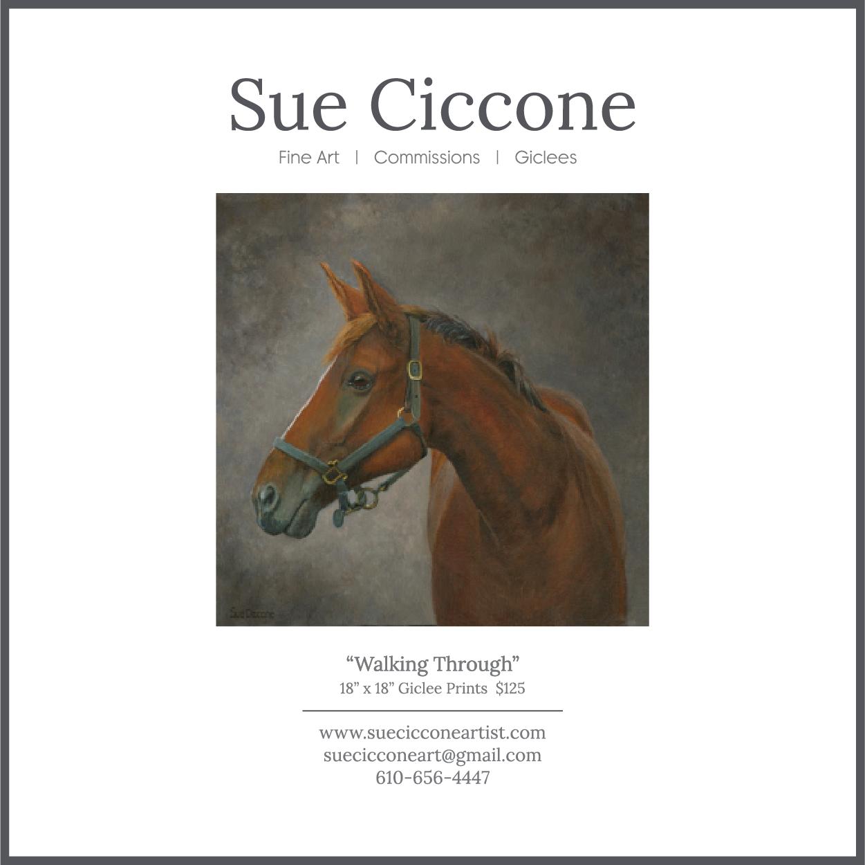 Sue Ciccone-Artist