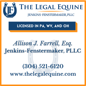 The Legal Equine