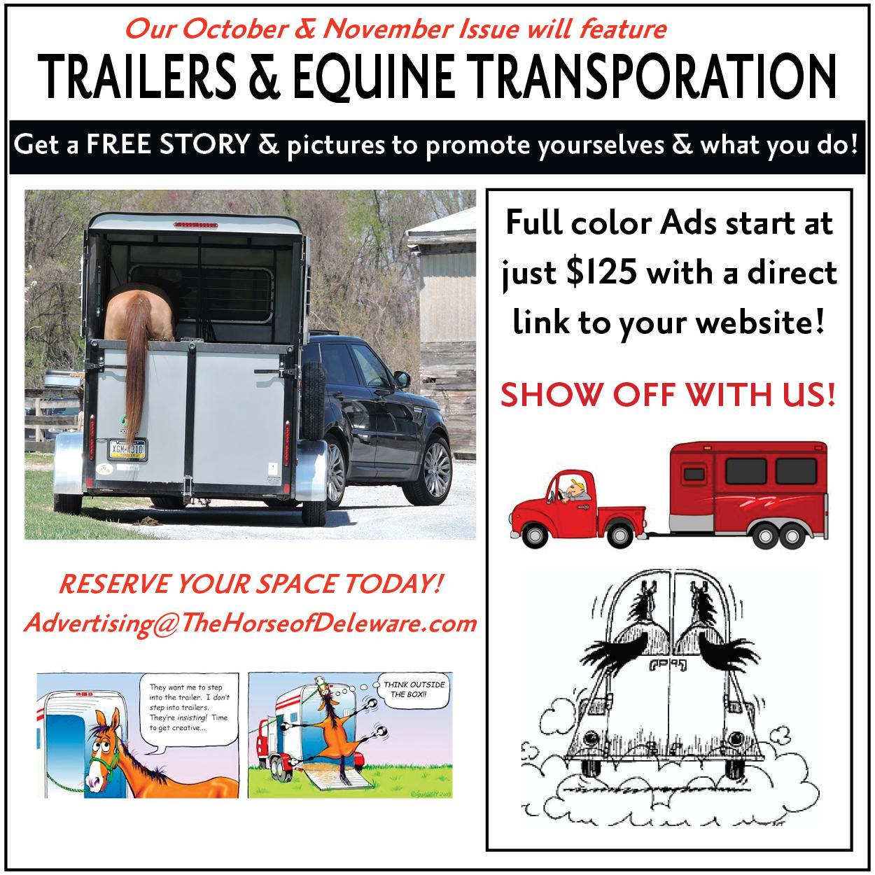 Trailers & Transport Promo Ad 2021