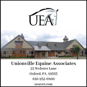 Unionville Vet