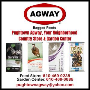 Pughtown Agway 300x300 2021