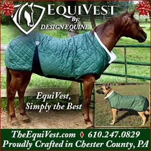 Equivest
