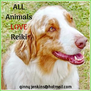 G Jenkins Animal Reiki