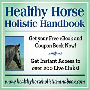 HHandbook