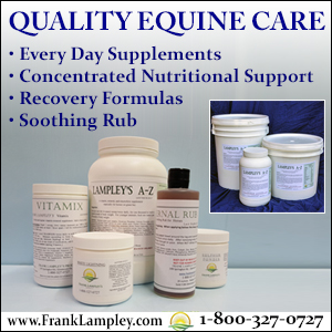 Quality Equine Care