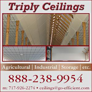 Triply Ceilings