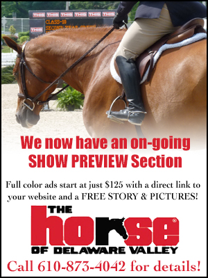 Show Preview Promo Ad-vague