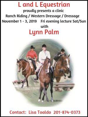 L & L Equestrian-Lynn Palm