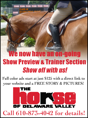 Show Preview & Trainer PROMO AD