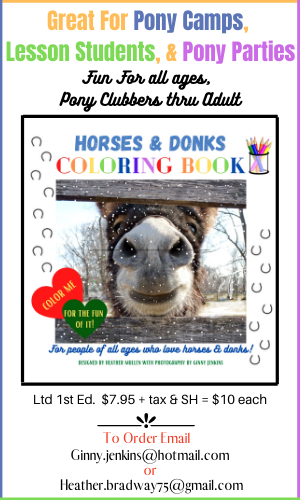 Ginny & Heather's Coloring Book Ad