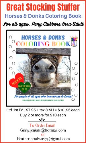 Ginny Jenkins-Horses & Donks CB