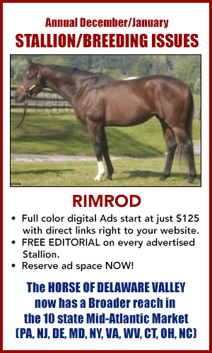 Stallion/Breeding PROMO ad-2021