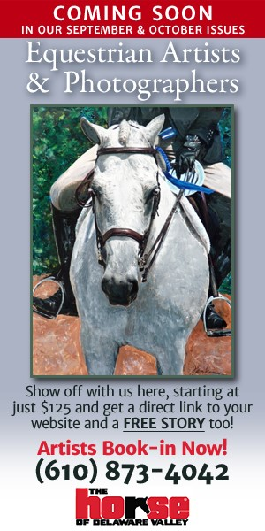 Equine Artists & Photographers PROMO Ad
