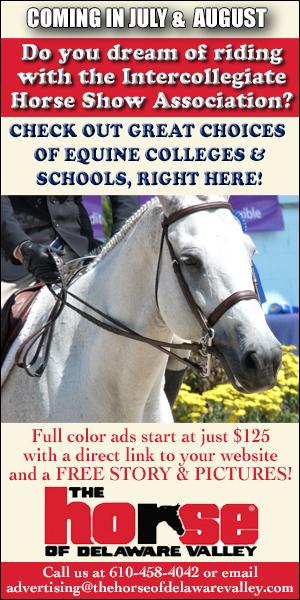 Equine Education Promo Ad 2021