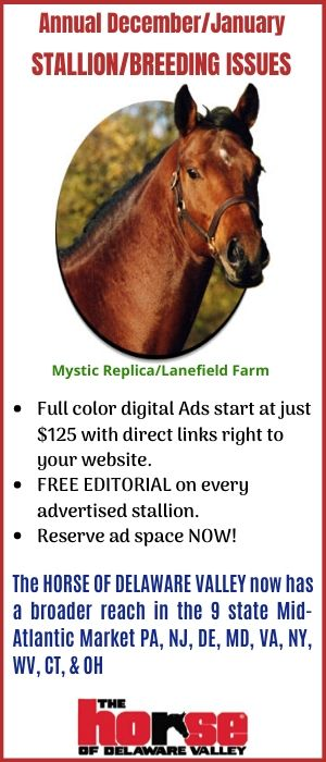 Stallion/Breeding PROMO ad