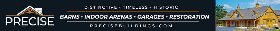 Precise Buildings Banner