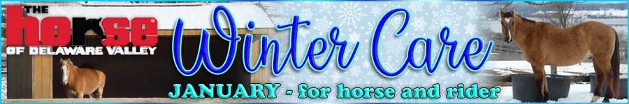 900x150 Winter Care