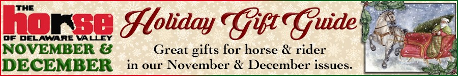 Holiday Gift Guide page banner