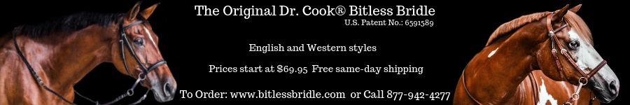 Dr. Cook Bitless Bridle