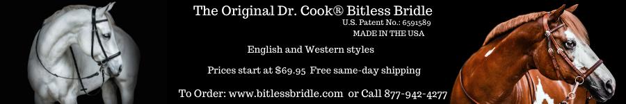 Bitless Bridle