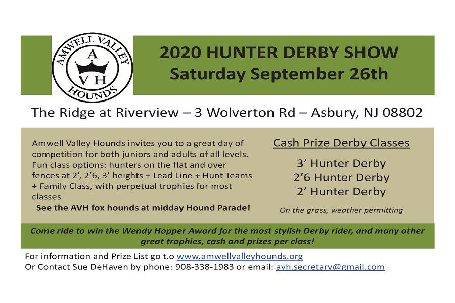 Amwell Valley Hounds Hunter Derby 2020