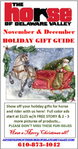 Holiday Gift Guide PROMO Ad