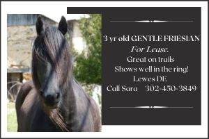 Freisian for Lease Ad